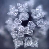 Water-Memory-Homeopathy-Origin-i18
