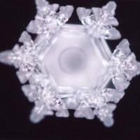 Water-Memory-Homeopathy-Origin-i21